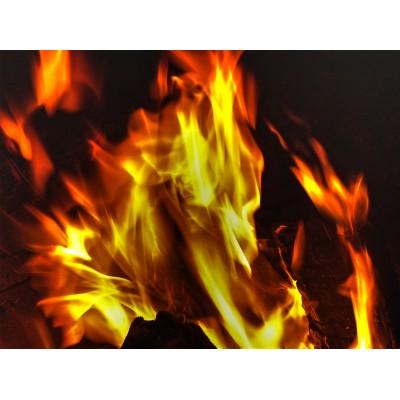 Fire Dragon, Color